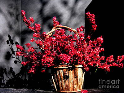 Photograph - Basket Of Cheer by Jacqueline M Lewis