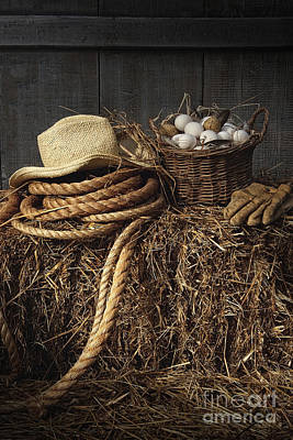 Photograph - Basket Of Eggs On Straw In The Barn by Sandra Cunningham