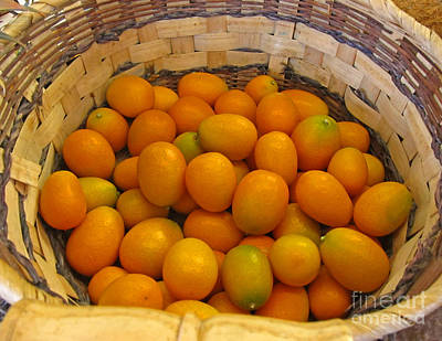 Photograph - Basket Of Kumquat Fruit Art Prints by Valerie Garner
