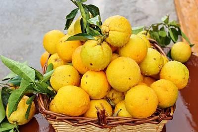 Photograph - Basket Of Oranges by Paula Guy