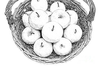 Snack Drawing - Basket With Apples Sketch by Ezeepics