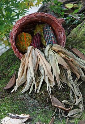 Photograph - Basketful by Suzanne Gaff