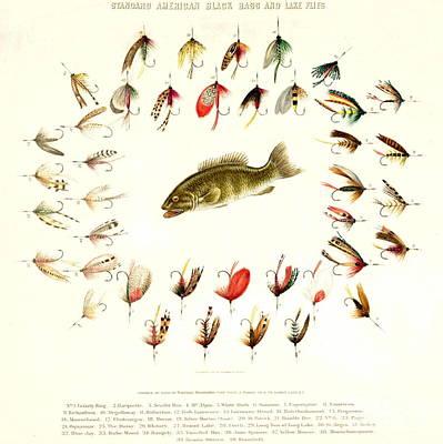 Bass Fishing Flies 1882 Art Print by Padre Art