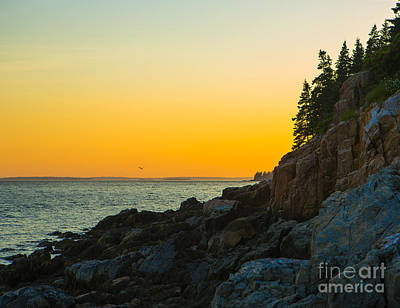 Bass Harbor  Art Print by Diane Diederich