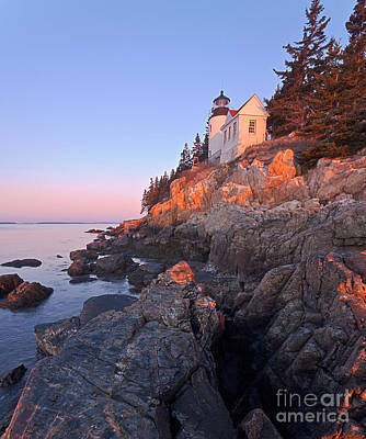 Photograph - Bass Harbor Lighthouse Acadia National Park 2 by Glenn Gordon