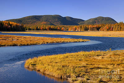 Photograph - Bass Harbor Marsh by Brian Jannsen