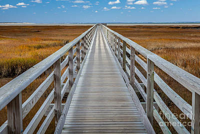 Photograph - Bass Hole Boardwalk by Susan Cole Kelly
