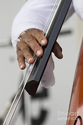 Photograph - Bass Player by Jim West