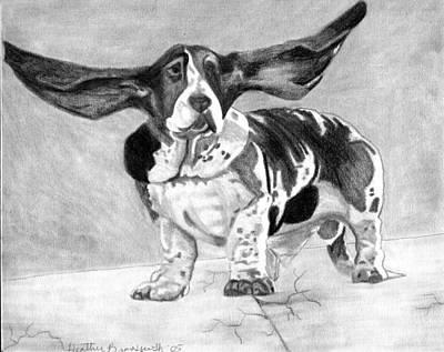 Basset Artesien Normand Dog Portrait Art Print by Olde Time  Mercantile