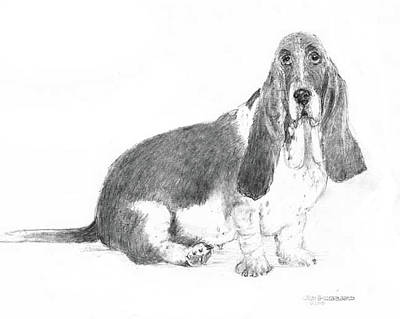 Art Print featuring the drawing Basset Hound by Jim Hubbard