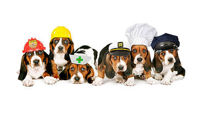 Bassets In Work Hats  Art Print by Susan Schmitz