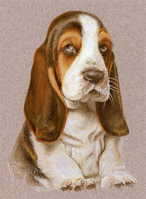 Puppies Mixed Media - Bassett Hound Puppy Portrait by Victor Powell
