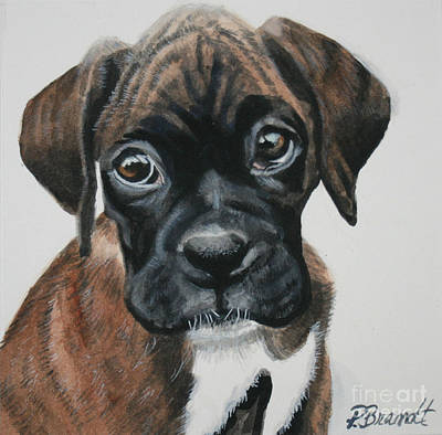 Boxer Painting - Bastogne by Patricia Brandt