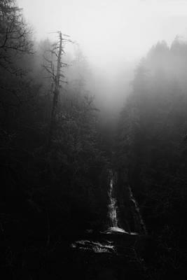 Photograph - Batson Creek Falls Fog by Ben Shields