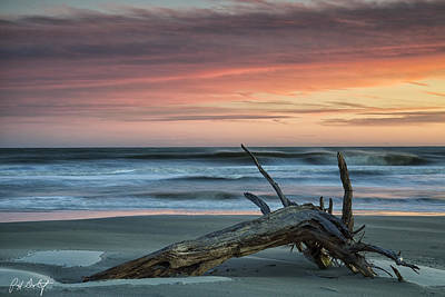 Battered Driftwood Art Print by Phill Doherty