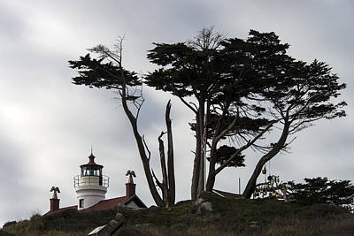 Photograph - Battery Point Lighthouse, Ca by Mark Newman