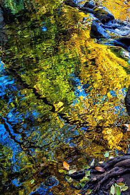 Photograph - Battle Creek Fall by Kathleen Bishop