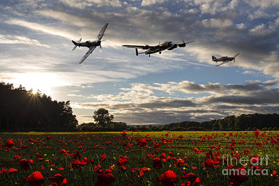 Lancaster Bomber Digital Art - Battle Of Britain Poppy Pride by J Biggadike