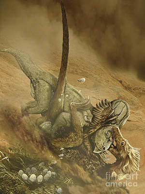 Battle Scene Between A Velociraptor Art Print by Jan Sovak
