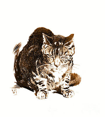 Battleship Cat 1898 Art Print by Padre Art