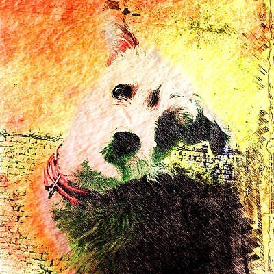 Mixed Media - Baxter by Kevyn Bashore