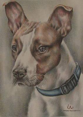 Pitbull Drawing - Baxter by Lisa Marie Szkolnik