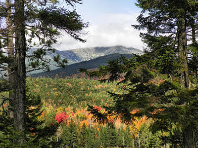 Photograph - Baxter State Park 13 by Gene Cyr