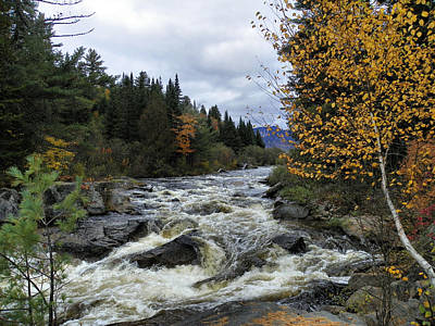 Photograph - Baxter State Park 18 by Gene Cyr