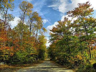 Photograph - Baxter State Park 5 by Gene Cyr