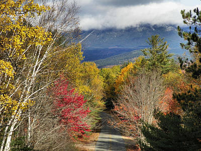 Photograph - Baxter State Park 6 by Gene Cyr