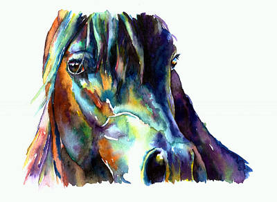 Painting - Bay Arabian Horse by Christy  Freeman