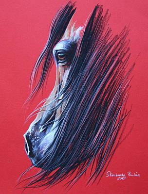 Bay Arabian Horse Art Print by Paulina Stasikowska
