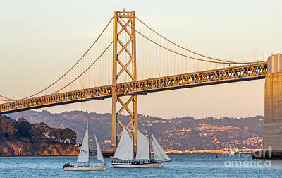 Photograph - Bay Bridge Gold by Kate Brown