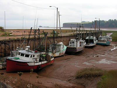 Photograph - Bay Of Fundy by Robert Lozen