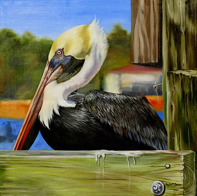 Waterfowl Painting - Bay St. Louis Pelican by Phyllis Beiser