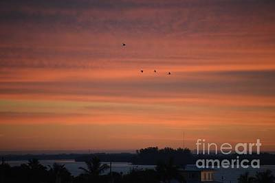 Photograph - Bay Waters Sunrise by Joan McArthur