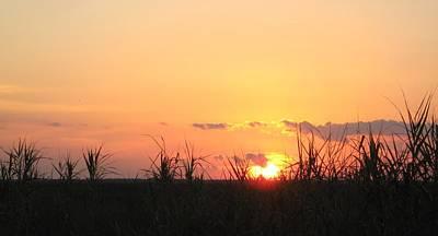 Art Print featuring the photograph Bayou Sunset by John Glass