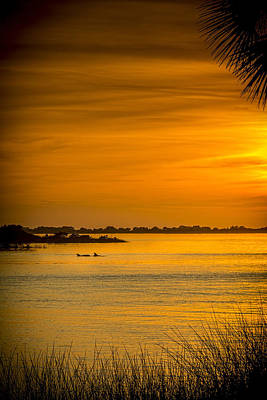 Bayport Dolphins Art Print by Marvin Spates