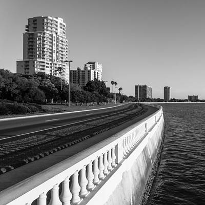 Bayshore Blvd Art Print by Clay Townsend