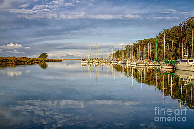 Photograph - Bayside Marina by Alice Cahill