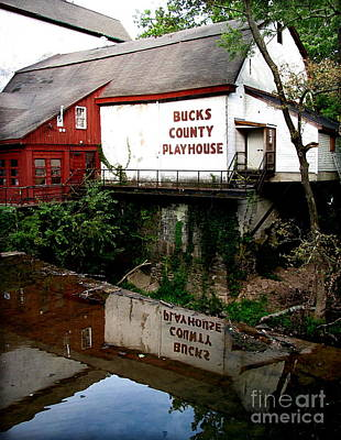 Bc Playhouse Art Print by Colleen Kammerer