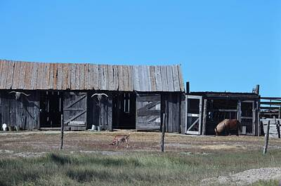 Ghostly Barn Photograph - Badlands N P 38 by Nelson Skinner