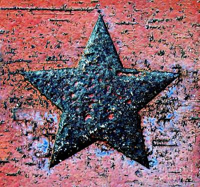 Photograph - Lone Star by Tim Townsend