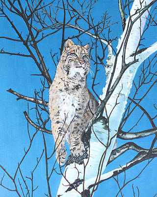 Bobcats Mixed Media - Be Cautious by Rick Reber