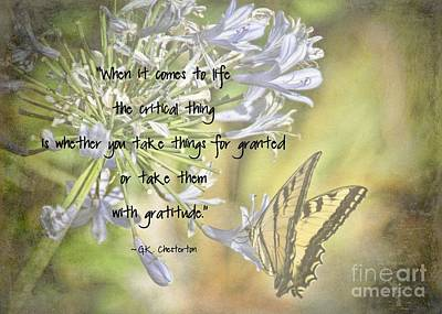 Photograph - Be Grateful by Peggy Hughes