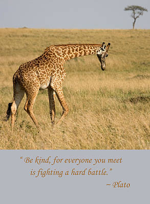 Photograph - Be Kind Plato Quote by Chris Scroggins