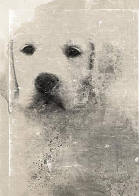 Pup Digital Art - Be Loved by Chantal Scholten