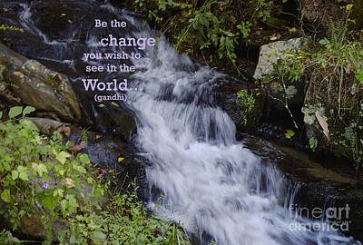 Photograph - Be The Change by Sandra Clark