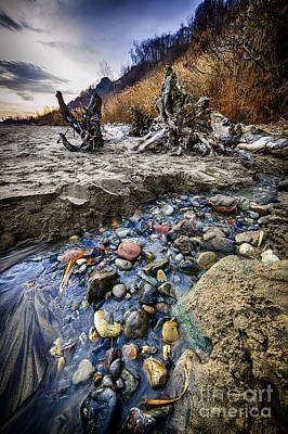 Beach Brook At Scarborough Bluffs Art Print by Elena Elisseeva