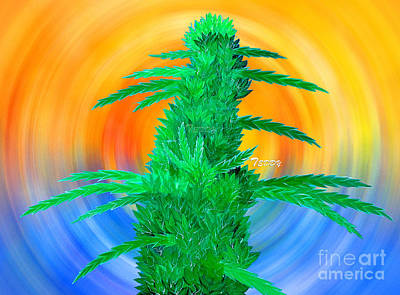Beach Bud Art Print by Teddy Maritopia